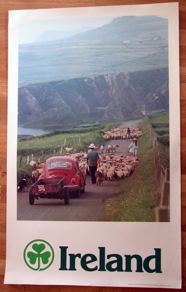 bf-sheep-653x1024